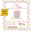 Owl birth cross stitch