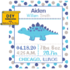 Stegosaurus Birth Record